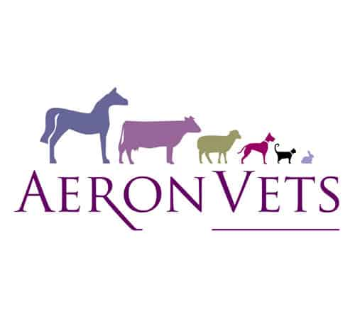 Logo design for Vet