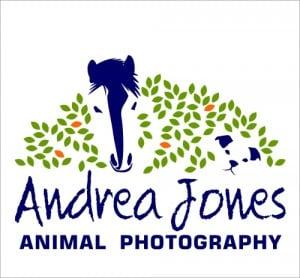 Good branding for<br>animal photographer